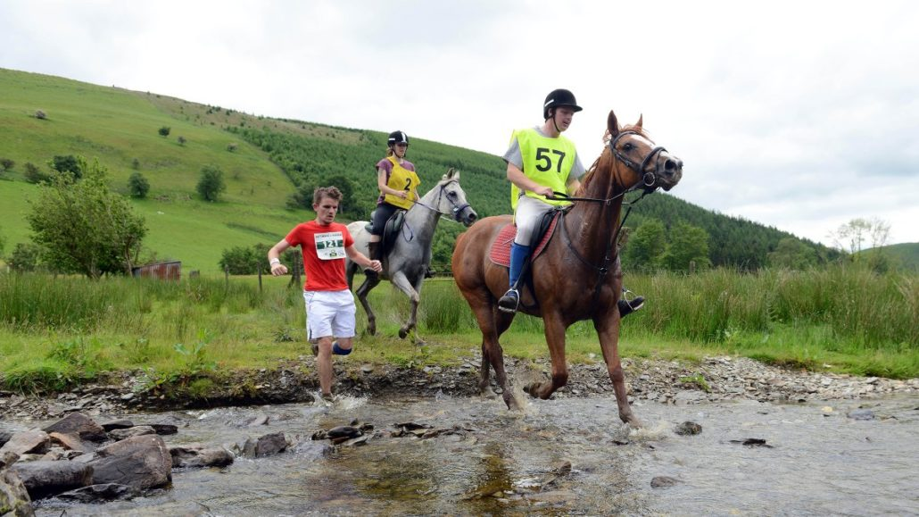 What Physiologists Learn When Humans Race Against Horses